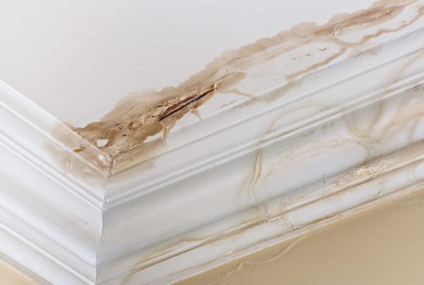 home repairs archives - atlas home repair